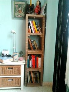 pequeña estantería vertical 1