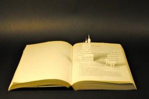libros recortados miguel strogoff 1