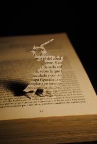 Libros recortados-Ivanhoe5