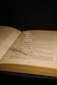 Libro recortado. Scaramouche4